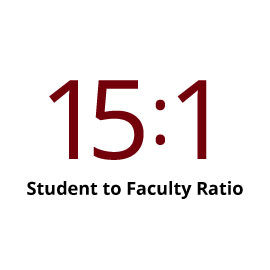 Infographic: 15:1 student to faculty ratio